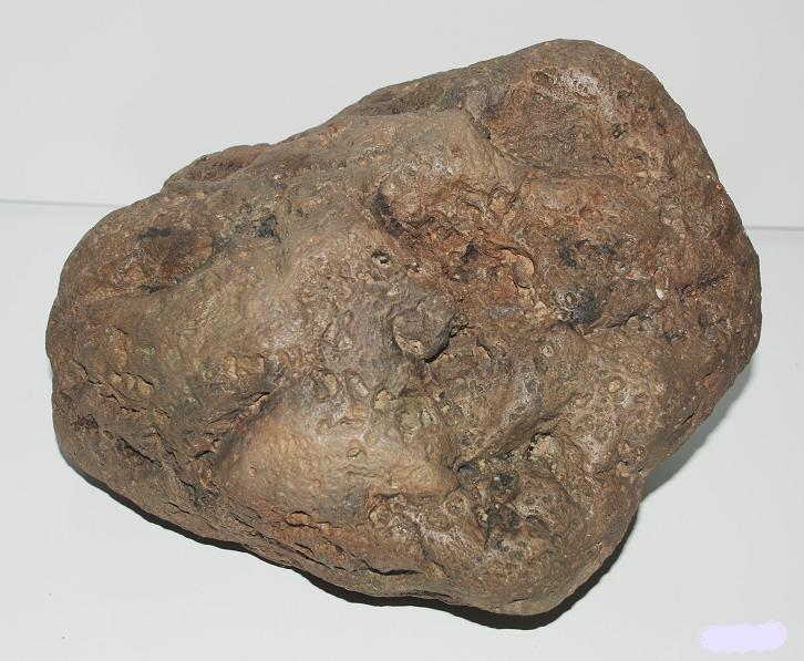 River Stone F 26x23x16 cm